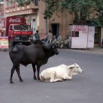 Агра. Индия.